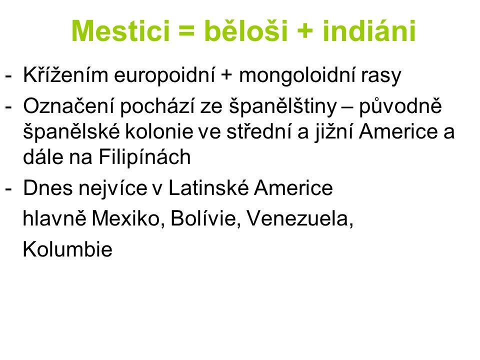 Mestici = běloši + indiáni