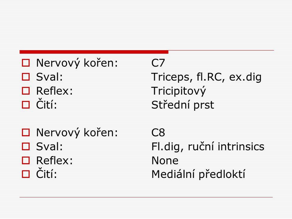 Nervový kořen: Sval: Reflex: Čití: C7. Triceps, fl.RC, ex.dig. Tricipitový. Střední prst. C8.