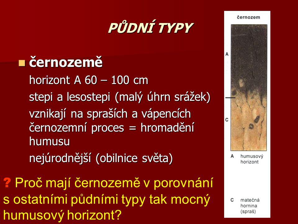 PŮDNÍ TYPY černozemě. horizont A 60 – 100 cm. stepi a lesostepi (malý úhrn srážek)