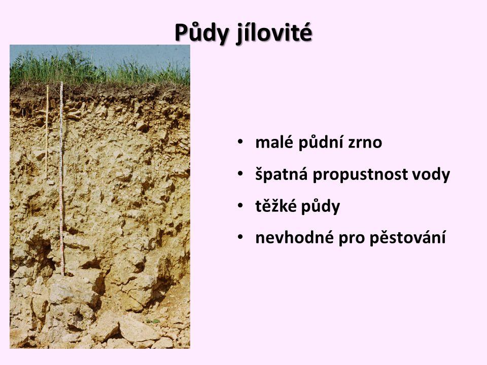 Půdy jílovité malé půdní zrno špatná propustnost vody těžké půdy