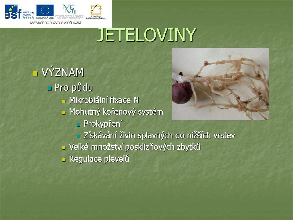 JETELOVINY VÝZNAM Pro půdu Mikrobiální fixace N