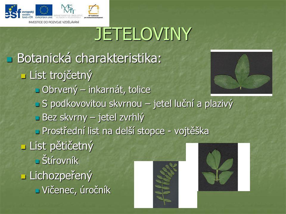 JETELOVINY Botanická charakteristika: List trojčetný List pětičetný