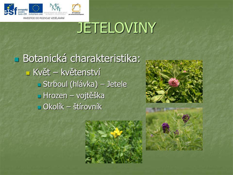 JETELOVINY Botanická charakteristika: Květ – květenství
