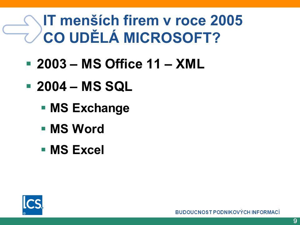 IT menších firem v roce 2005 CO UDĚLÁ MICROSOFT