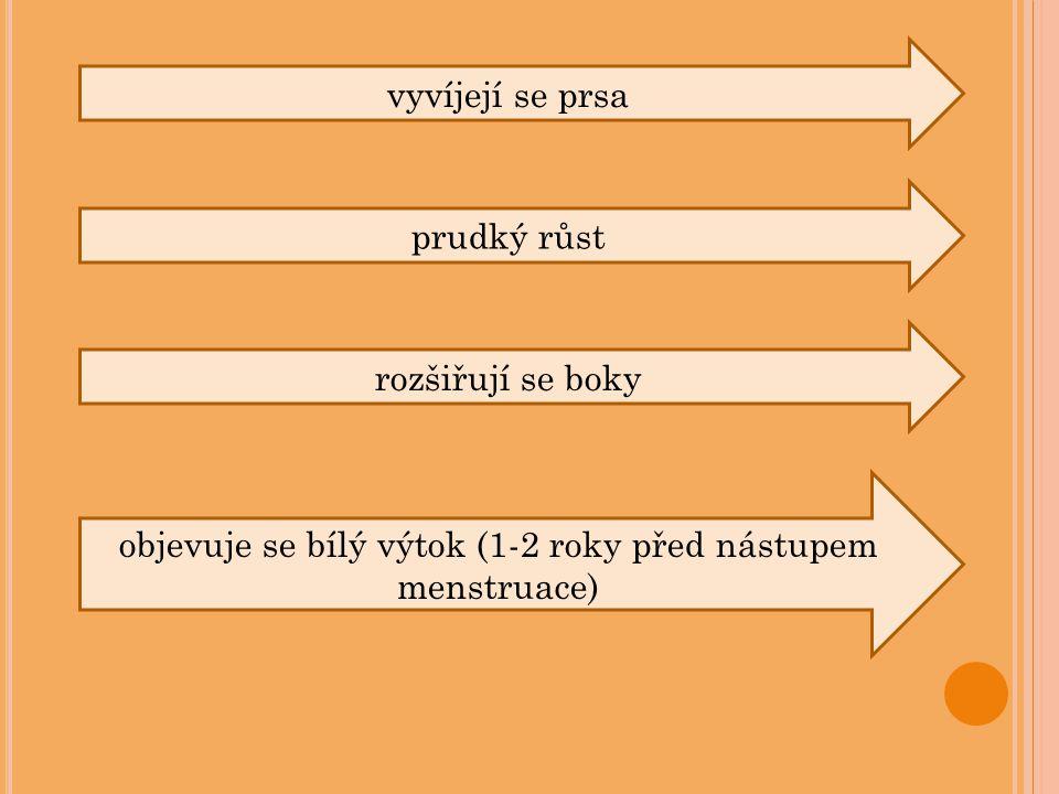 objevuje se bílý výtok (1-2 roky před nástupem menstruace)