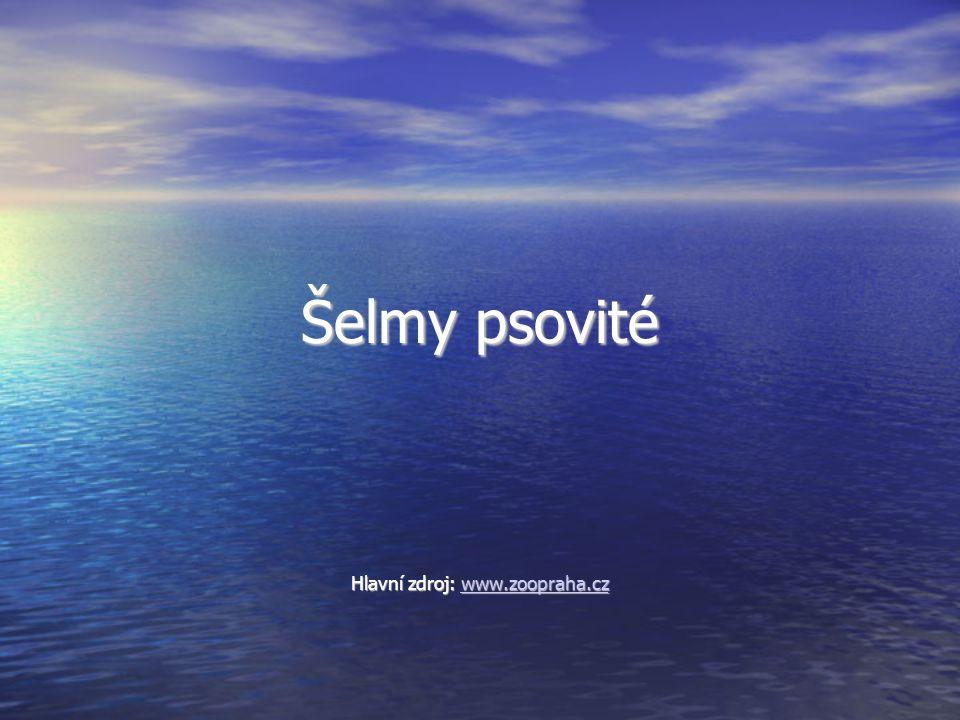 Hlavní zdroj: www.zoopraha.cz
