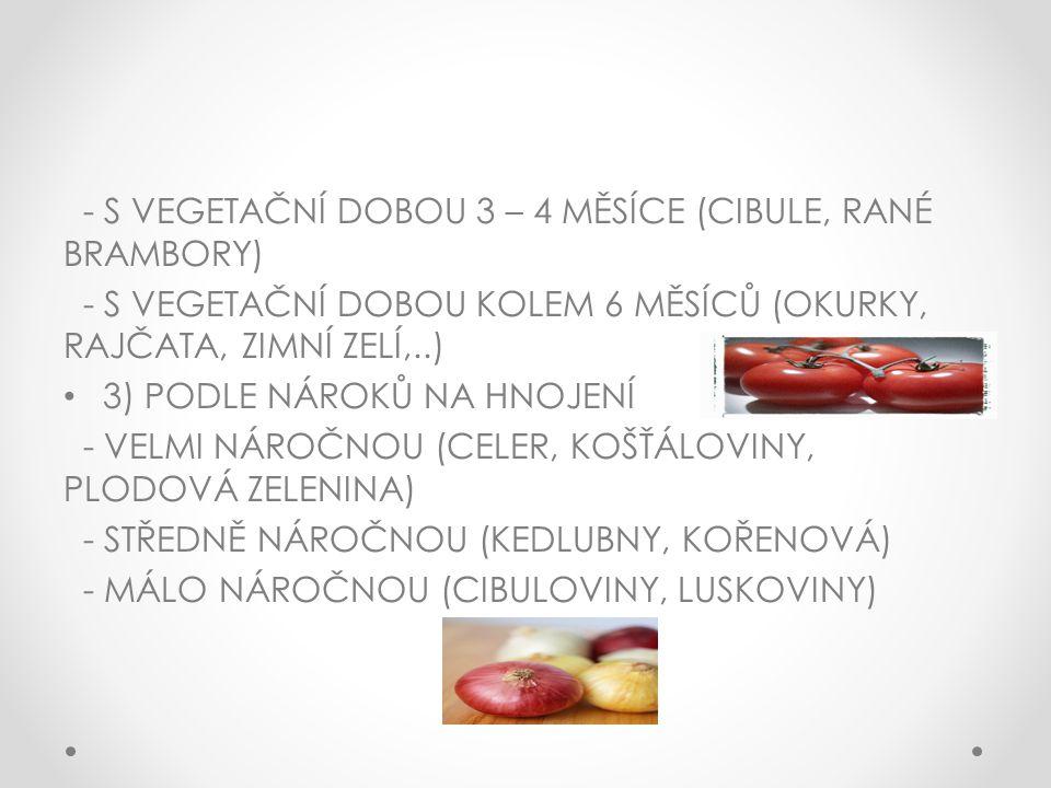 - S VEGETAČNÍ DOBOU 3 – 4 MĚSÍCE (CIBULE, RANÉ BRAMBORY)