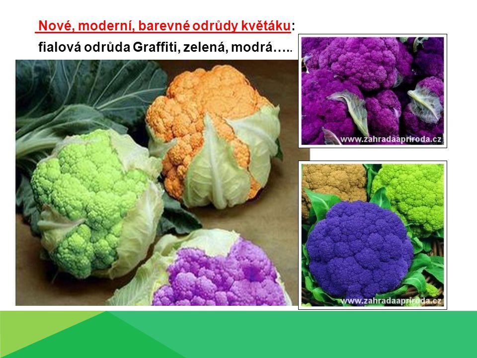 Nové, moderní, barevné odrůdy květáku: