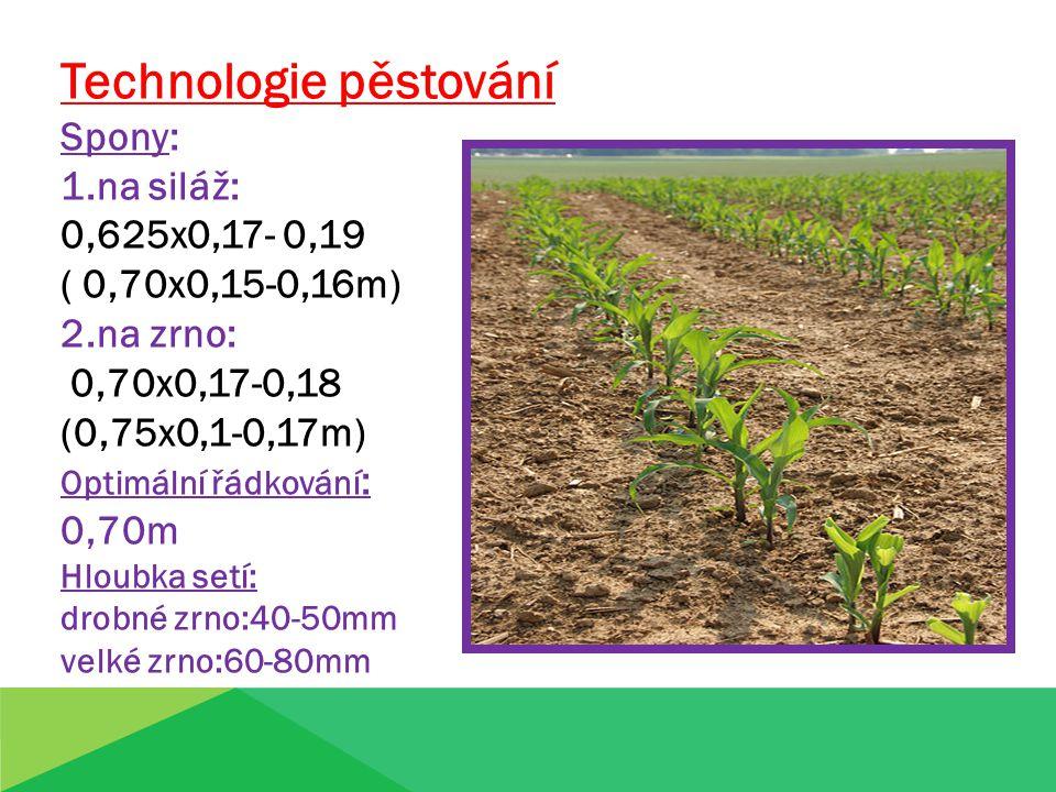 Technologie pěstování - kukuřice