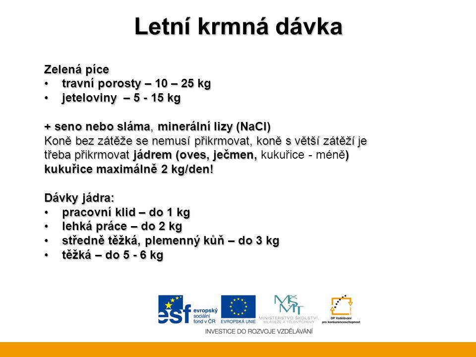 Letní krmná dávka Zelená píce travní porosty – 10 – 25 kg
