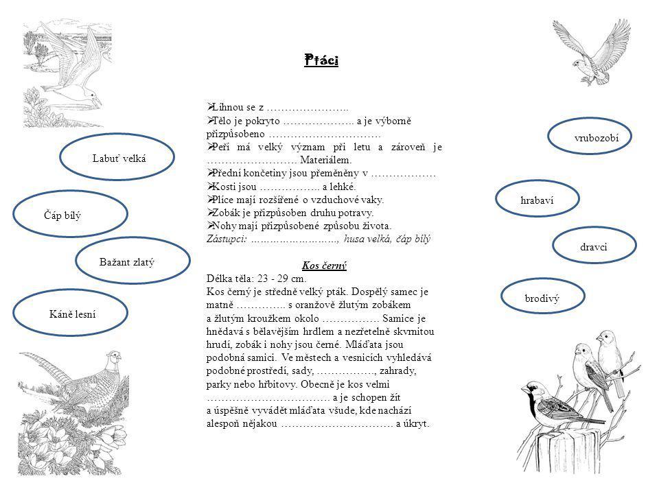 Ptáci Líhnou se z …………………..