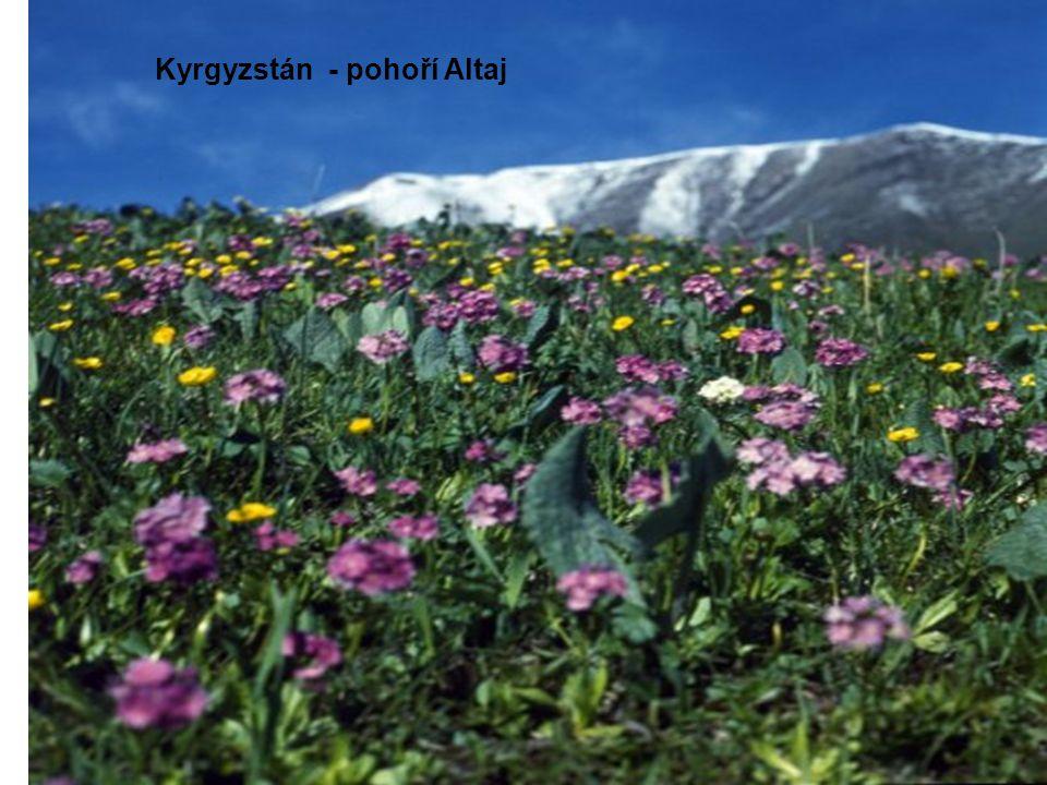 Kyrgyzstán - pohoří Altaj