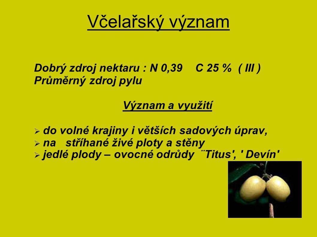 Včelařský význam Dobrý zdroj nektaru : N 0,39 C 25 % ( III )