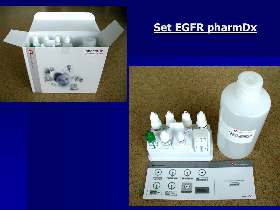 Set EGFR pharmDx