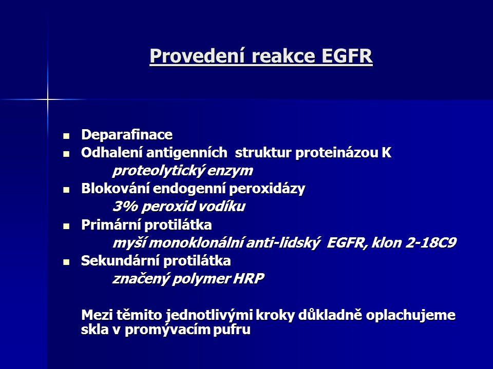 Provedení reakce EGFR Deparafinace