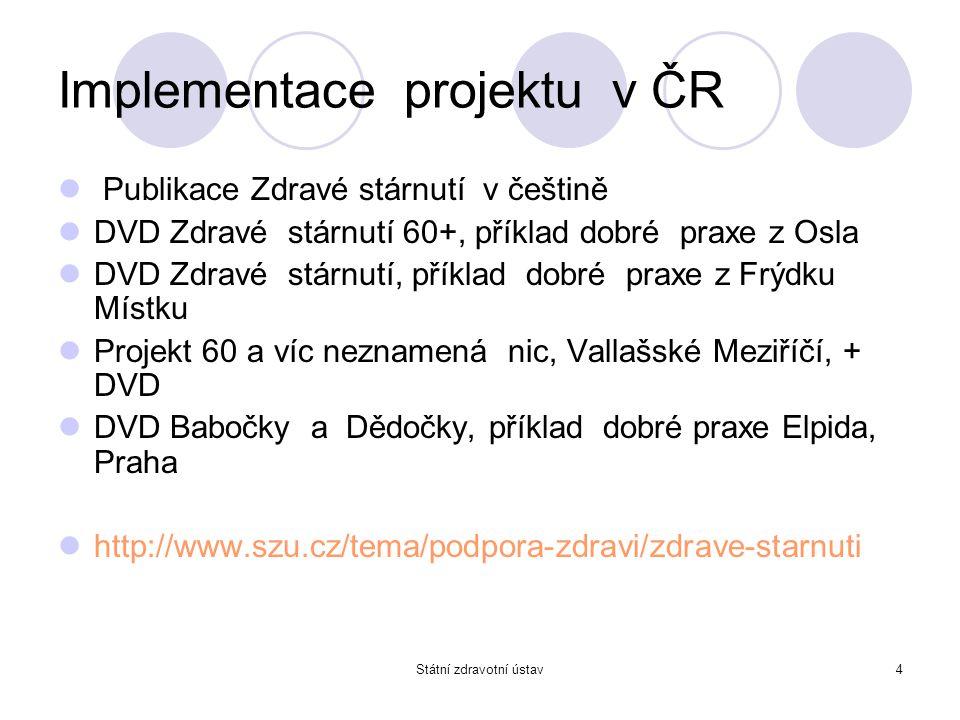 Implementace projektu v ČR