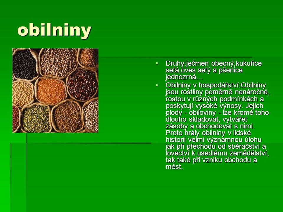 obilniny Druhy:ječmen obecný,kukuřice setá,oves setý a pšenice jednozrná…