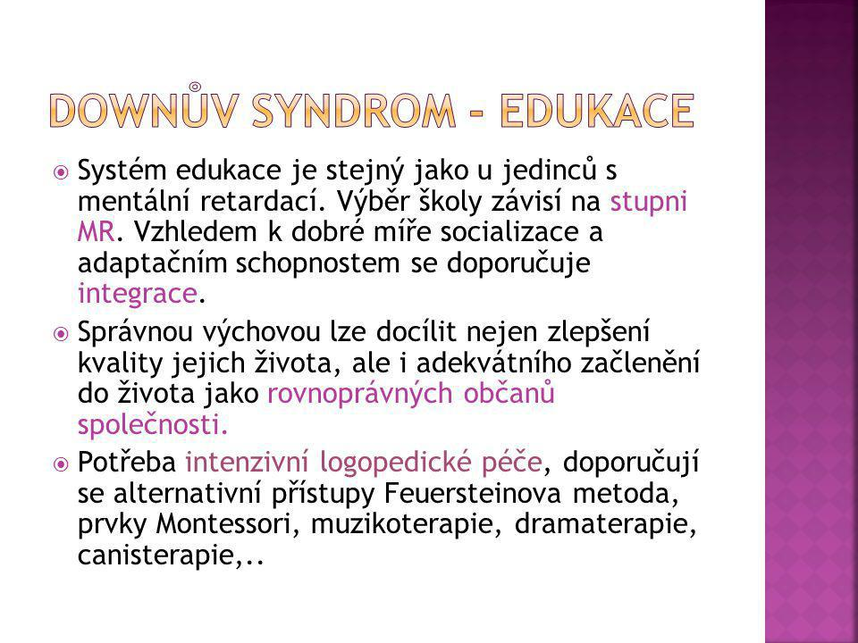 Downův syndrom - edukace