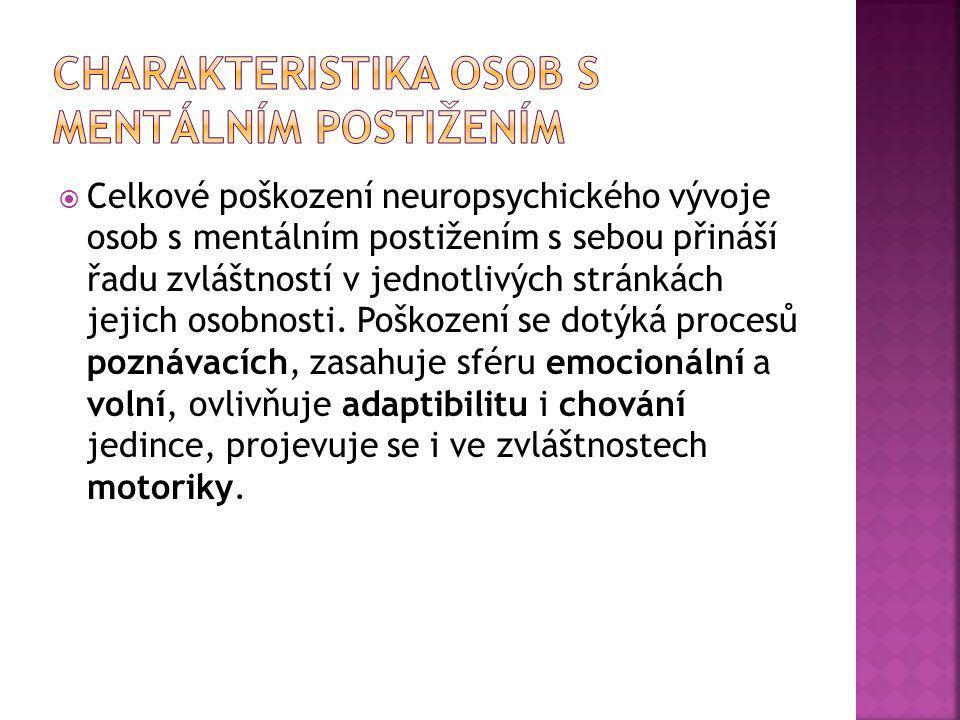 Charakteristika osob s mentálním postižením