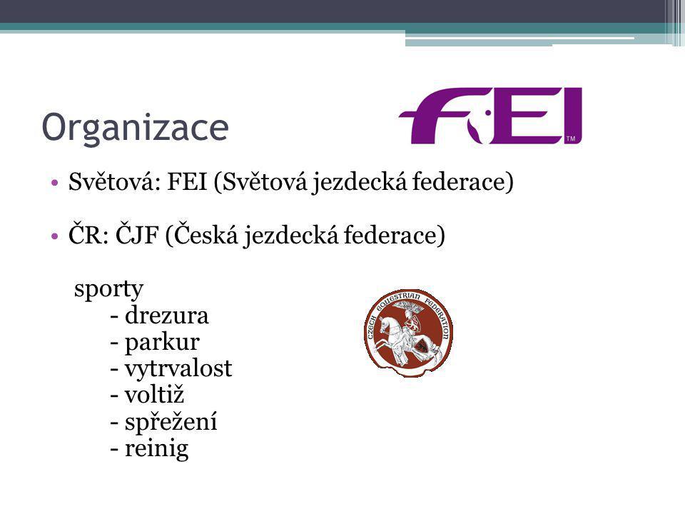 Organizace Světová: FEI (Světová jezdecká federace)