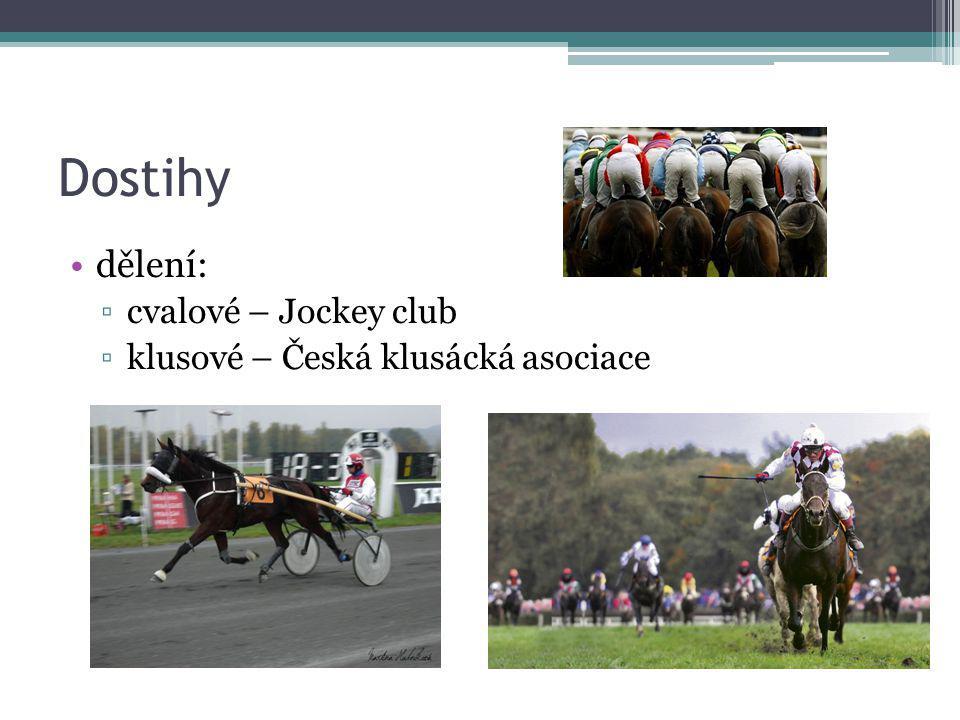 Dostihy dělení: cvalové – Jockey club