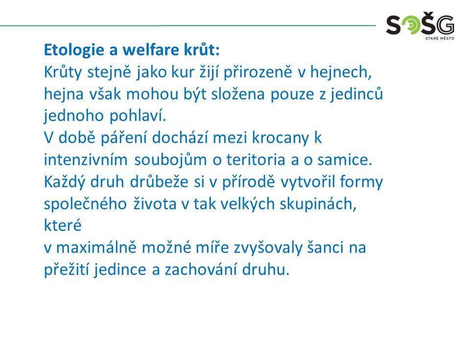 Etologie a welfare krůt: