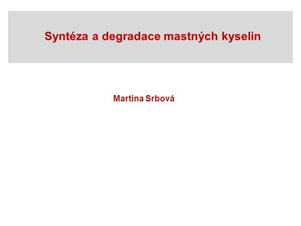Syntéza a degradace mastných kyselin