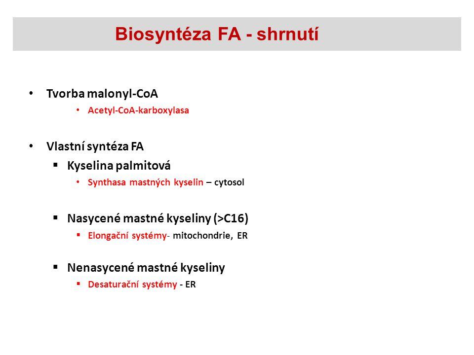 Biosyntéza FA - shrnutí