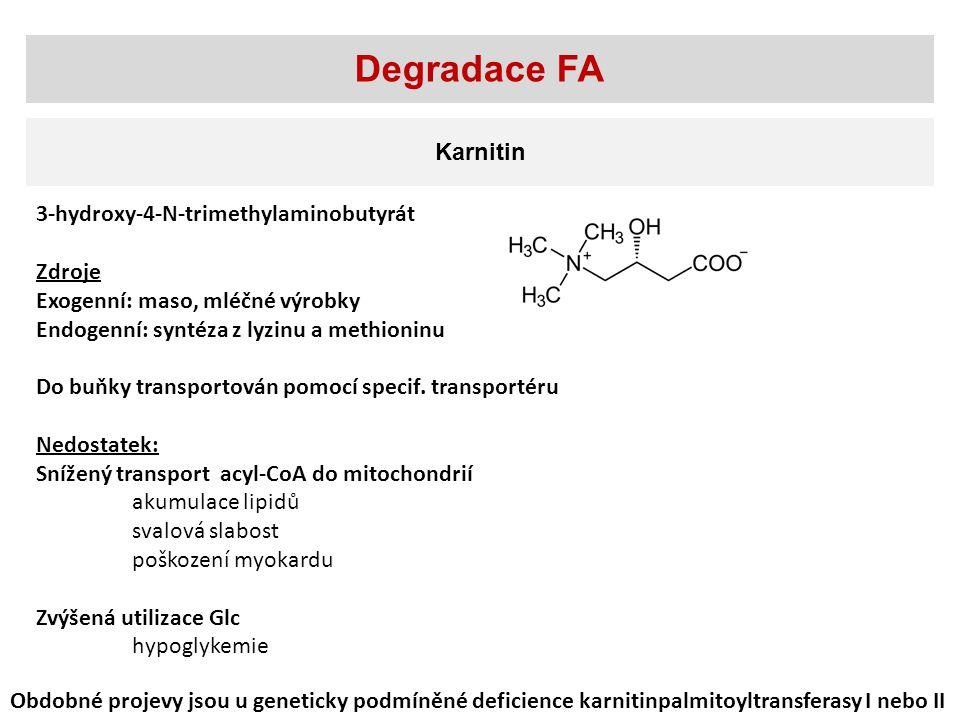 Degradace FA Karnitin 3-hydroxy-4-N-trimethylaminobutyrát Zdroje