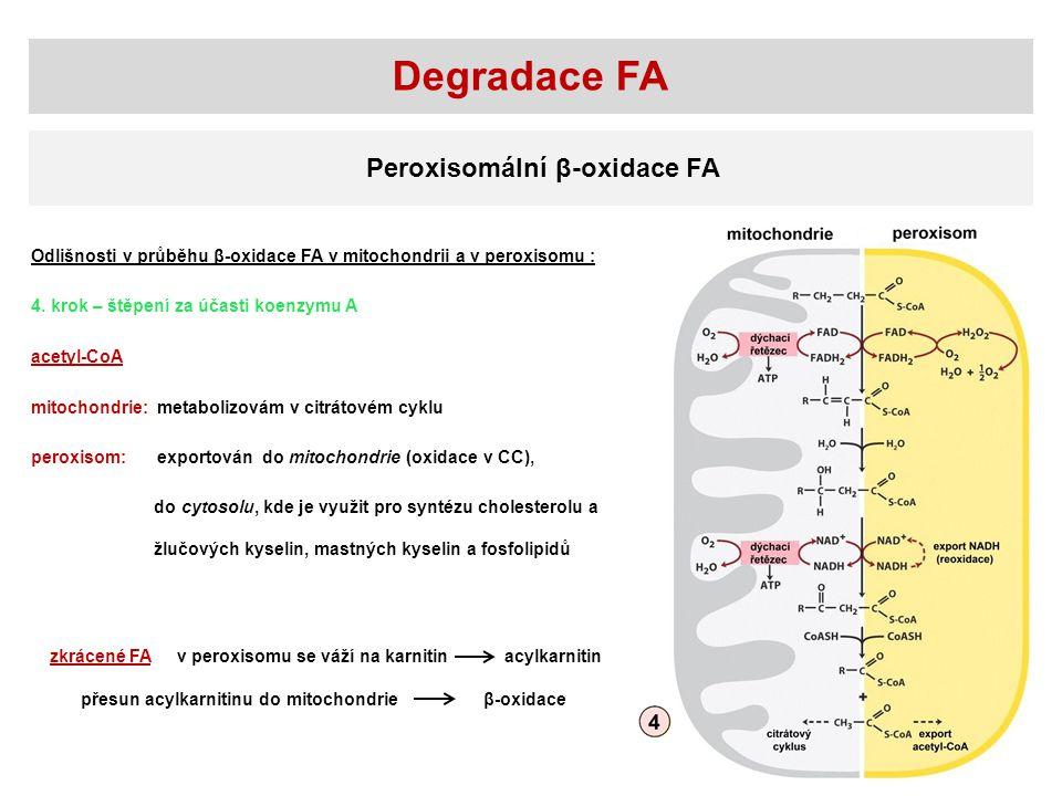 Degradace FA Peroxisomální β-oxidace FA