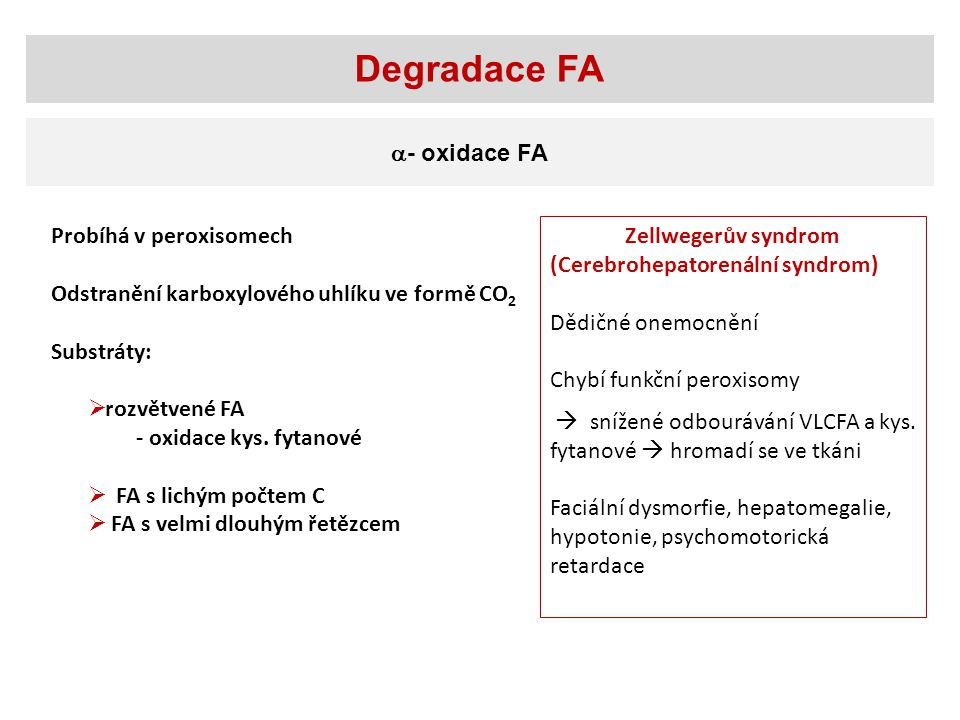 Degradace FA - oxidace FA Probíhá v peroxisomech