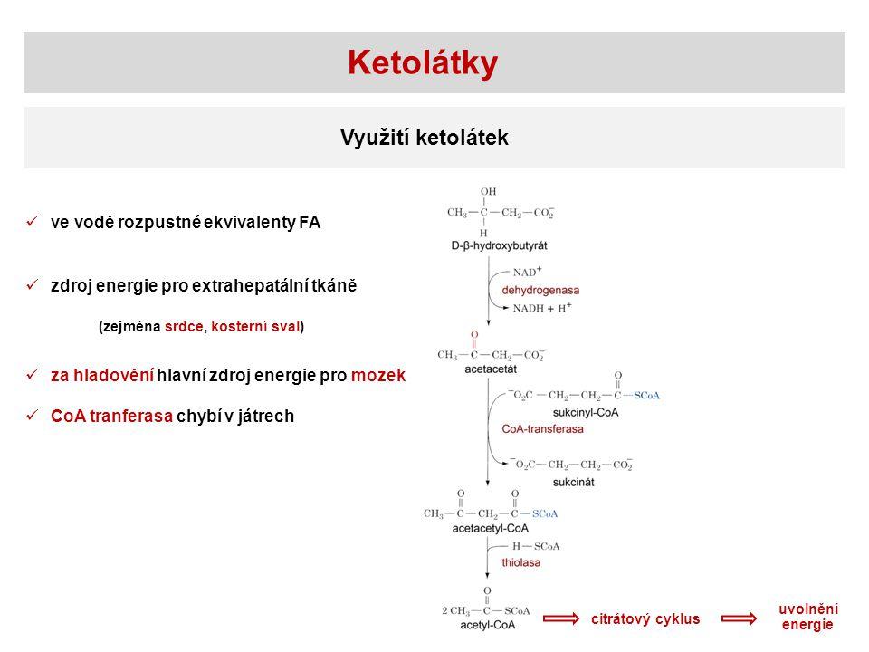 Ketolátky Využití ketolátek ve vodě rozpustné ekvivalenty FA