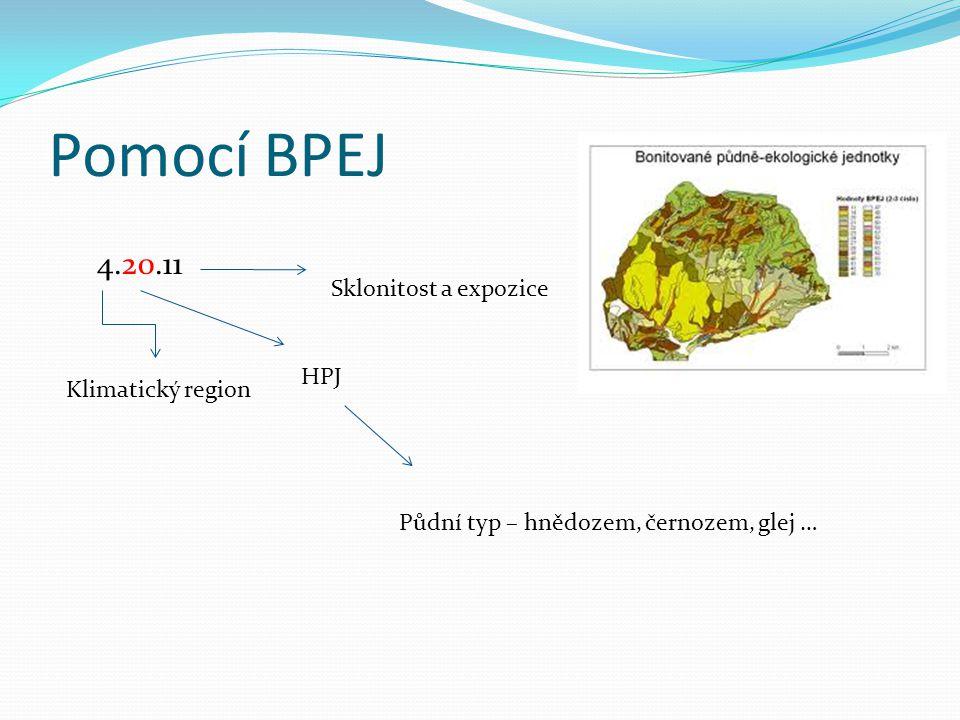 Pomocí BPEJ 4.20.11 Sklonitost a expozice HPJ Klimatický region