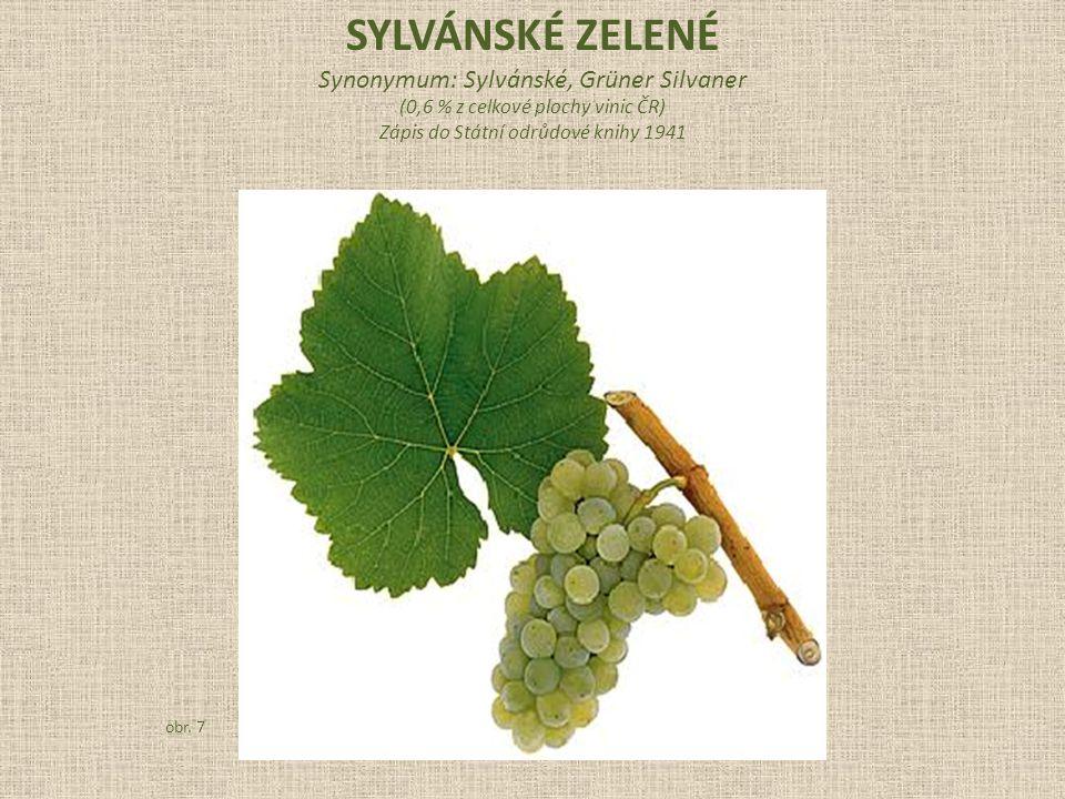SYLVÁNSKÉ ZELENÉ Synonymum: Sylvánské, Grüner Silvaner