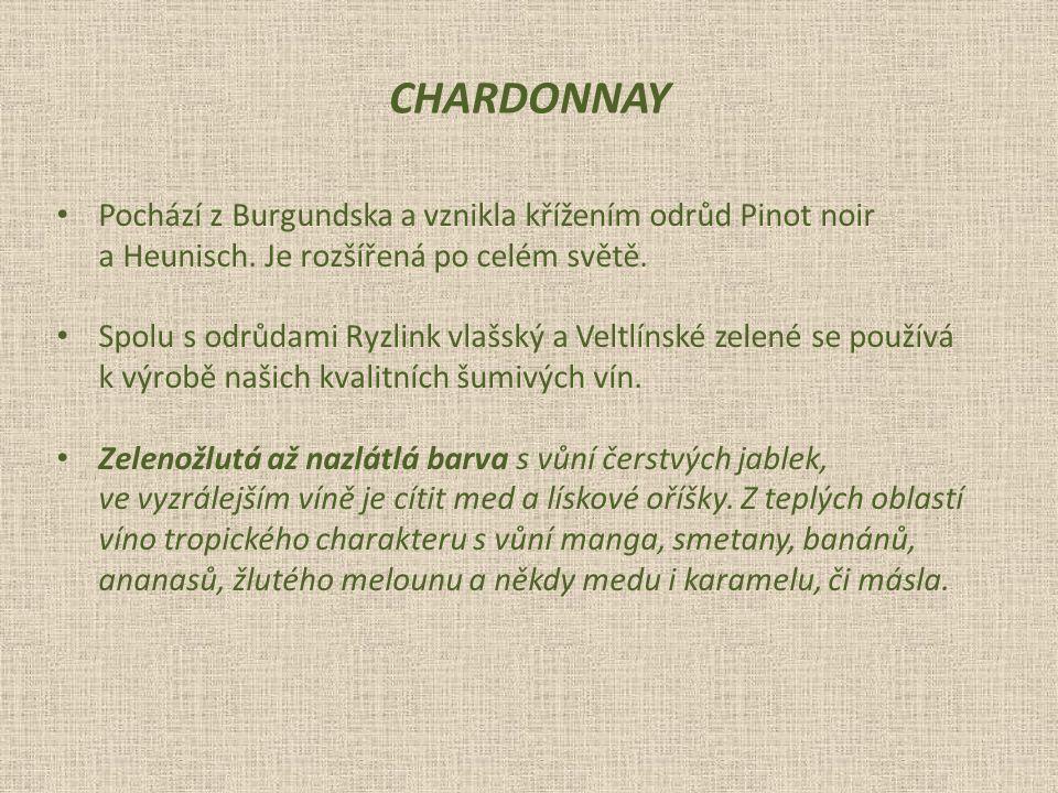 CHARDONNAY Pochází z Burgundska a vznikla křížením odrůd Pinot noir