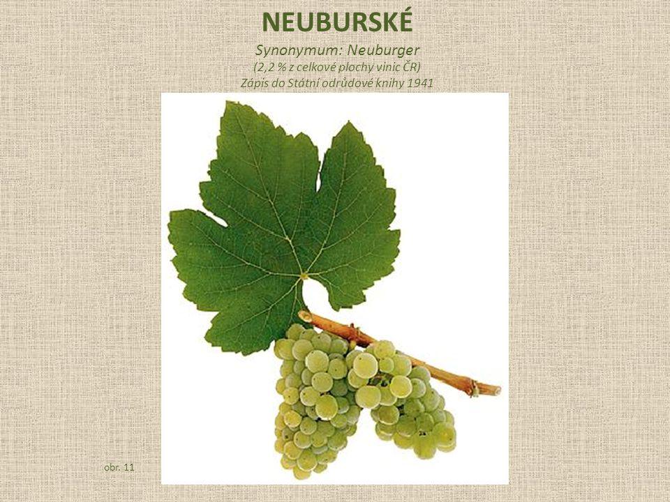 NEUBURSKÉ Synonymum: Neuburger (2,2 % z celkové plochy vinic ČR)