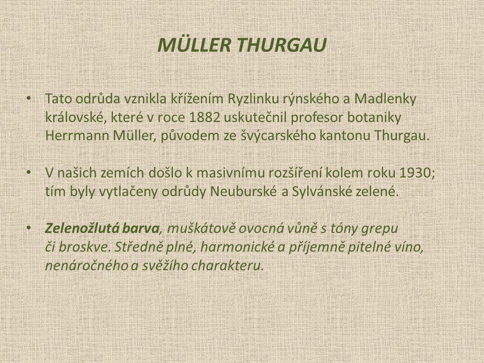 MÜLLER THURGAU Tato odrůda vznikla křížením Ryzlinku rýnského a Madlenky. královské, které v roce 1882 uskutečnil profesor botaniky.