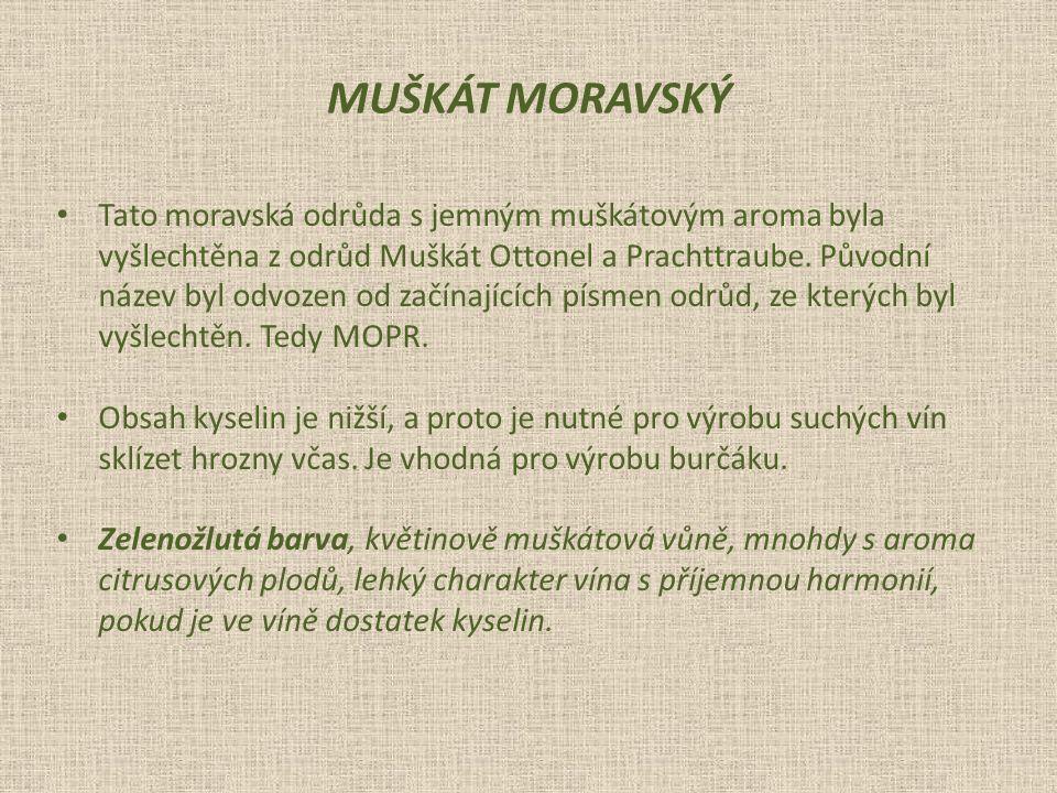 MUŠKÁT MORAVSKÝ Tato moravská odrůda s jemným muškátovým aroma byla