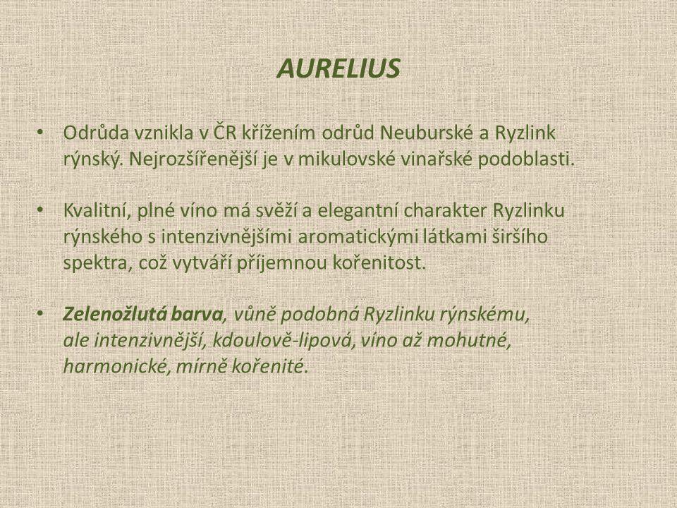 AURELIUS Odrůda vznikla v ČR křížením odrůd Neuburské a Ryzlink