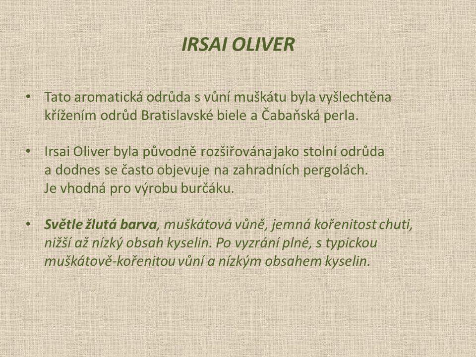 IRSAI OLIVER Tato aromatická odrůda s vůní muškátu byla vyšlechtěna