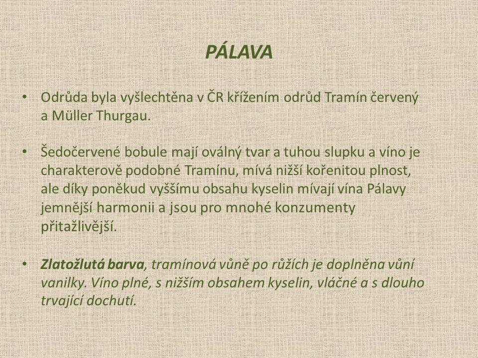 PÁLAVA Odrůda byla vyšlechtěna v ČR křížením odrůd Tramín červený. a Müller Thurgau. Šedočervené bobule mají oválný tvar a tuhou slupku a víno je.