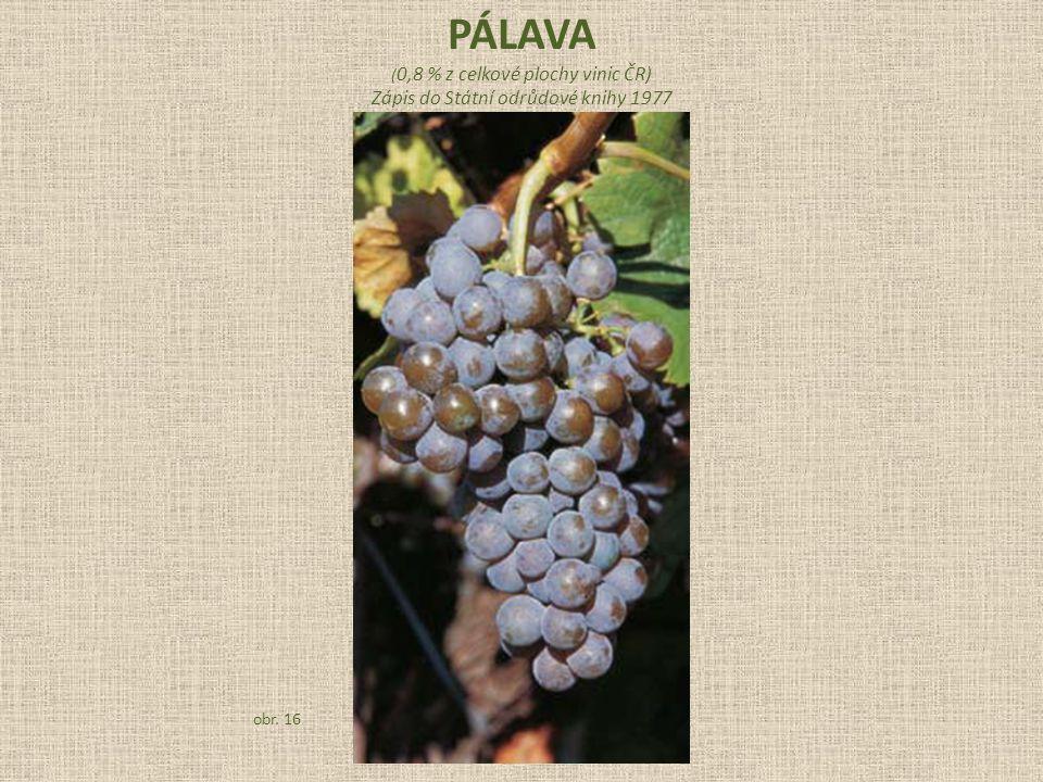PÁLAVA Zápis do Státní odrůdové knihy 1977