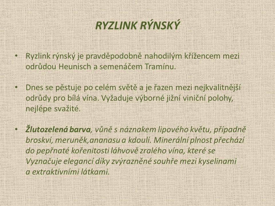 RYZLINK RÝNSKÝ Ryzlink rýnský je pravděpodobně nahodilým křížencem mezi. odrůdou Heunisch a semenáčem Tramínu.