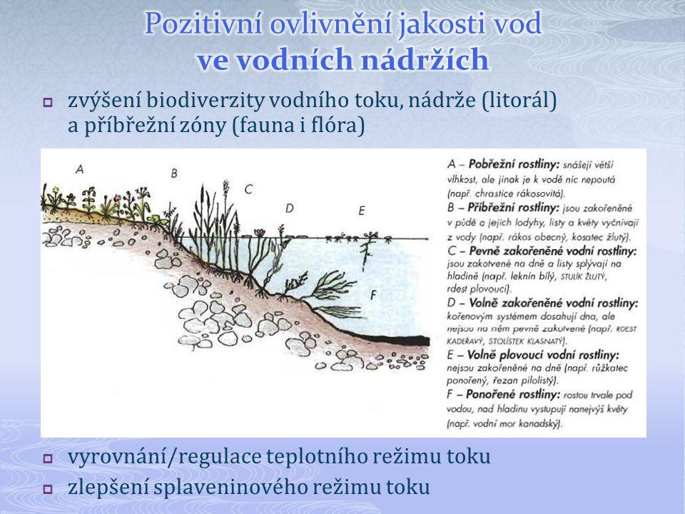 Pozitivní ovlivnění jakosti vod ve vodních nádržích