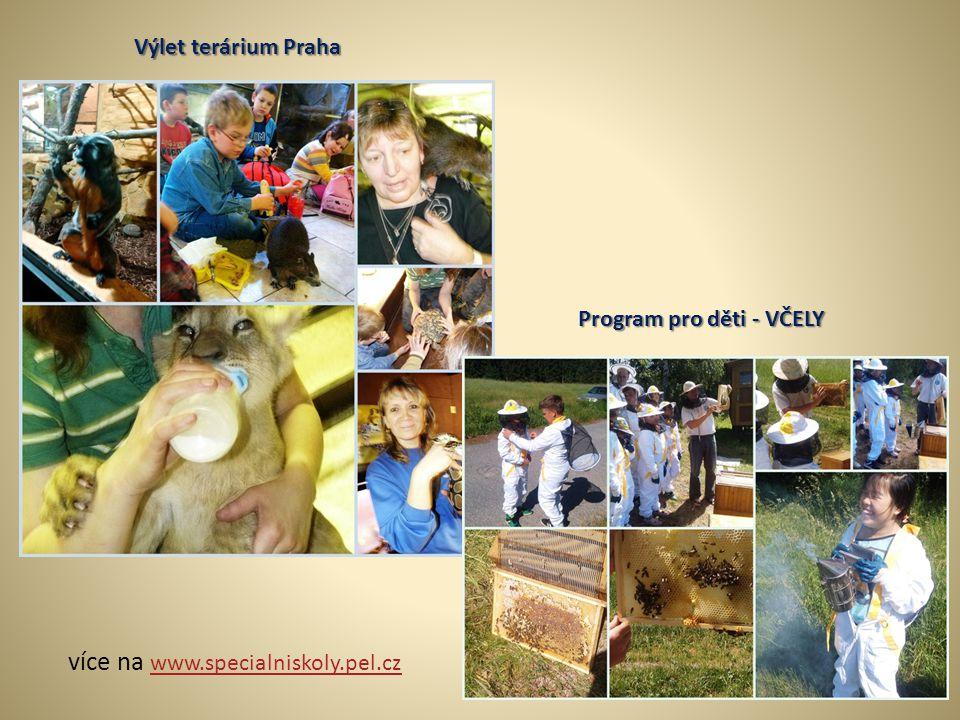 více na www.specialniskoly.pel.cz