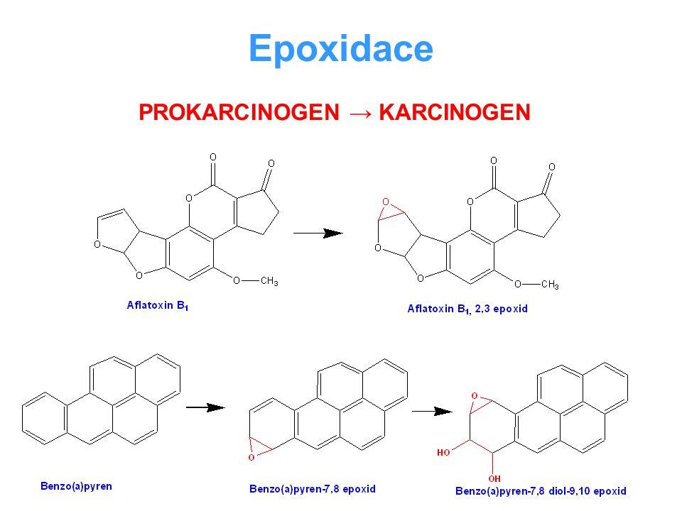 Epoxidace PROKARCINOGEN → KARCINOGEN