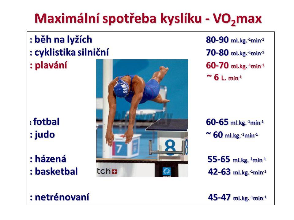 Maximální spotřeba kyslíku - VO2max