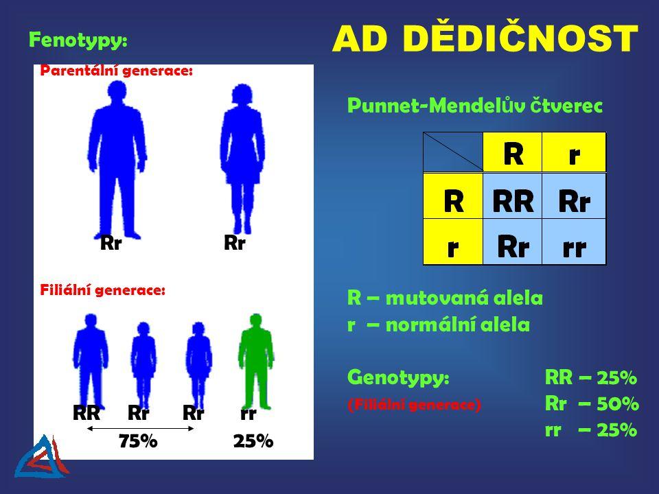 AD DĚDIČNOST Fenotypy: Punnet-Mendelův čtverec Rr Rr