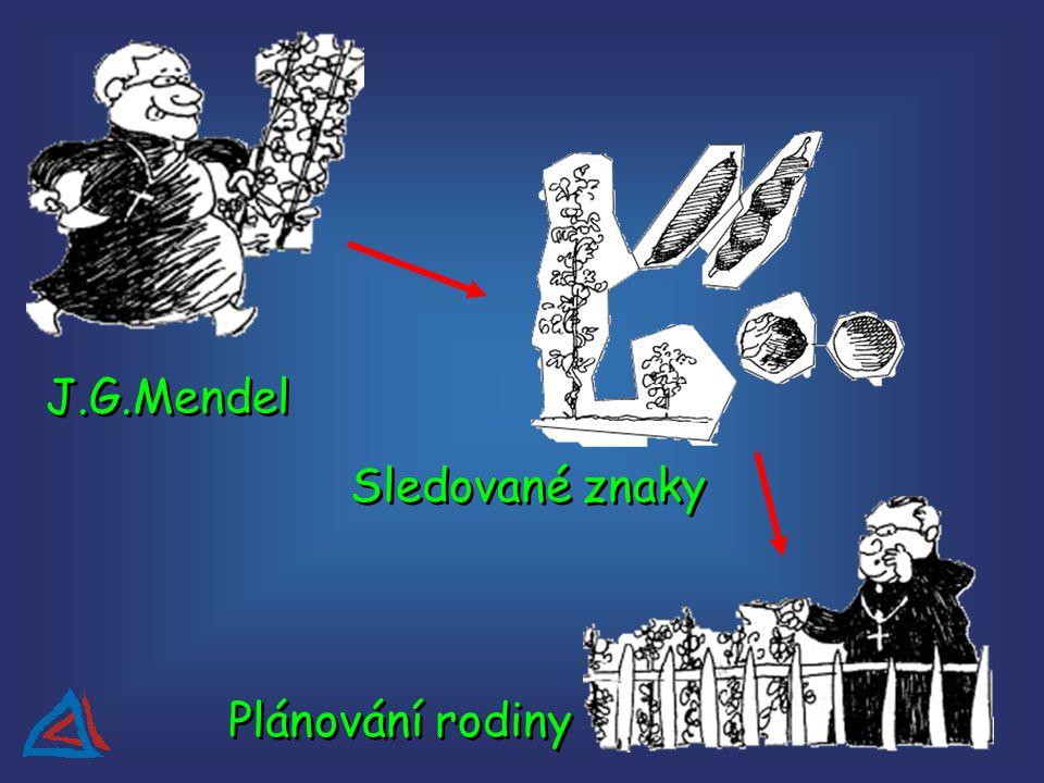 J.G.Mendel Sledované znaky Plánování rodiny