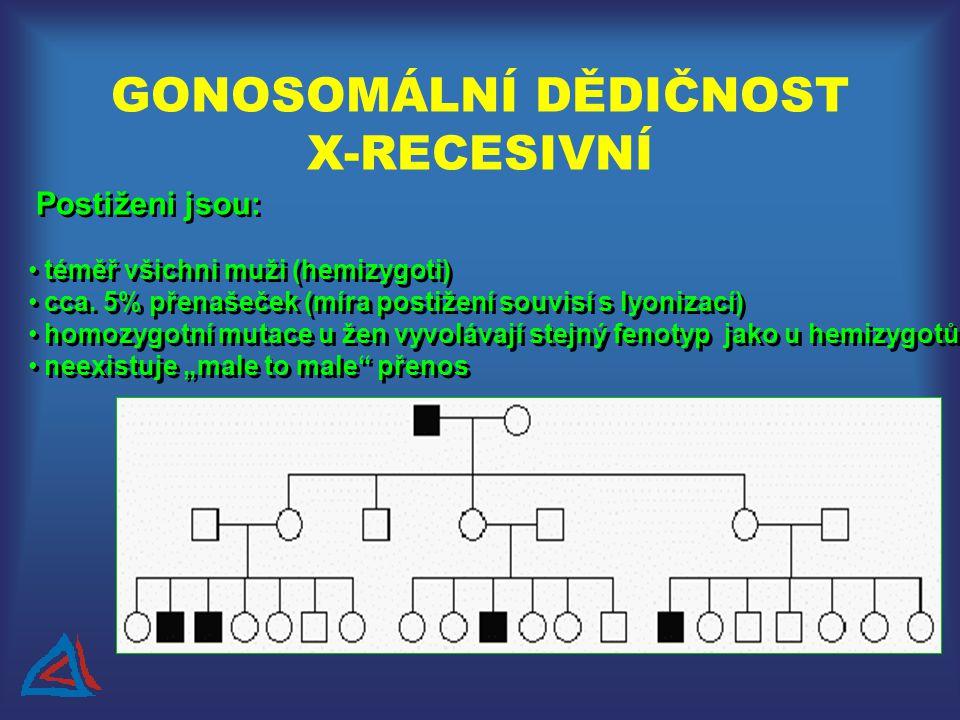 GONOSOMÁLNÍ DĚDIČNOST X-RECESIVNÍ